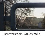 The Spiderweb And Frost In A...