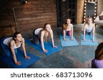 group of girls doing exercises... | Shutterstock . vector #683713096