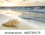 the sunset on the beach.  | Shutterstock . vector #683739175