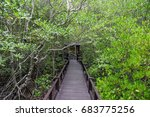 pathway to the jungle | Shutterstock . vector #683775256