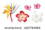 set of hand drawn watercolor... | Shutterstock . vector #683784886