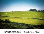 beautiful green field in isle... | Shutterstock . vector #683788762