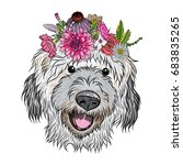 small  cute labradoodle puppy... | Shutterstock . vector #683835265