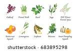 organic nature health vegetable ... | Shutterstock .eps vector #683895298