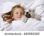 Stock photo top view of beautiful blonde little girl lying with white schnauzer puppy dog on white bed 683983285