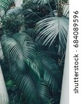 green palm leaves | Shutterstock . vector #684089596
