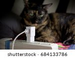 the power plugs socket and pet... | Shutterstock . vector #684133786