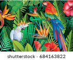parrots with tropical plants | Shutterstock .eps vector #684163822