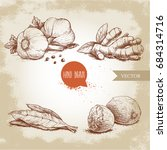 hand drawn sketch spices set.... | Shutterstock .eps vector #684314716