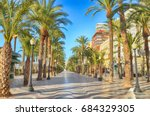 Alley Of Palm Trees Alicante ...