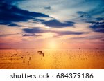 sunset over the sea in summer... | Shutterstock . vector #684379186