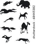 Stock vector movement of animals 68445382