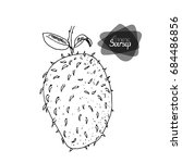 hand drawn sketch style soursop ... | Shutterstock .eps vector #684486856