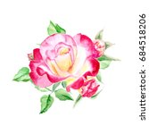 one pink and yellow rose with... | Shutterstock . vector #684518206