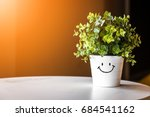 flowers pots decoration on...   Shutterstock . vector #684541162