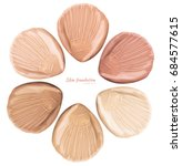 smears of foundation for face.... | Shutterstock . vector #684577615