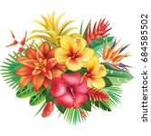 arrangement from tropical... | Shutterstock . vector #684585502