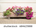 Flowers Planter With Different...