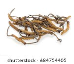 this herbal is name... | Shutterstock . vector #684754405
