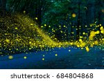Stock photo many fireflies flying in the forest it s like a light falls 684804868