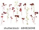 flower wallpaper from the... | Shutterstock . vector #684826048