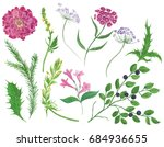 watercolor painting flower and... | Shutterstock . vector #684936655