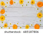 calendula and chamomile on a... | Shutterstock . vector #685187806