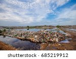 brid eat food on a garbage dump ... | Shutterstock . vector #685219912