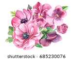pansies and anemones  flowers ... | Shutterstock . vector #685230076