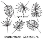 collection set of tropical... | Shutterstock .eps vector #685251076