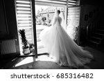 portrait of a fabulous bride... | Shutterstock . vector #685316482