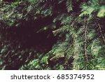 texture of plants in summer | Shutterstock . vector #685374952