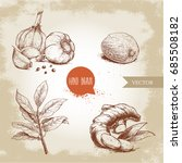hand drawn sketch spices set.... | Shutterstock .eps vector #685508182