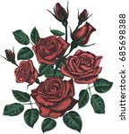 Stock vector red rose vector art stylized roses for card design 685698388