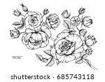rose flowers by hand drawing... | Shutterstock .eps vector #685743118