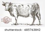 breeding cow. grazing cattle....   Shutterstock .eps vector #685763842