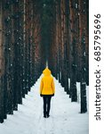 road covered in snow  pine pine ...   Shutterstock . vector #685795696