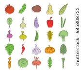 doodle vegetables icons set.... | Shutterstock .eps vector #685808722