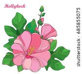 vector bunch with outline alcea ... | Shutterstock .eps vector #685855075