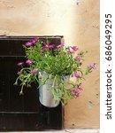beautiful flower in front of...   Shutterstock . vector #686049295