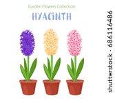 spring flower in flower pot.... | Shutterstock .eps vector #686116486