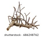 Isolated Tree Branch With Whit...