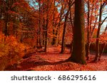 Beautiful Red Autumn Forest In...