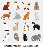 cat breeds cute pet animal set...   Shutterstock .eps vector #686388835
