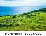 mountain green landscape with... | Shutterstock . vector #686637202