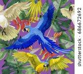 sky bird parrot pattern in a...   Shutterstock . vector #686672692