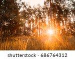 Sunset Or Sunrise In Autumn...