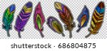 color feathers embroidery... | Shutterstock .eps vector #686804875