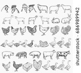 farm animals collection vector... | Shutterstock .eps vector #686989942