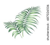 tropic palm leaves composition. ... | Shutterstock . vector #687026536